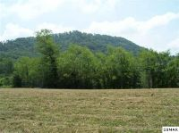 Home for sale: Tract 1 Reagan Springs Rd., Seymour, TN 37865