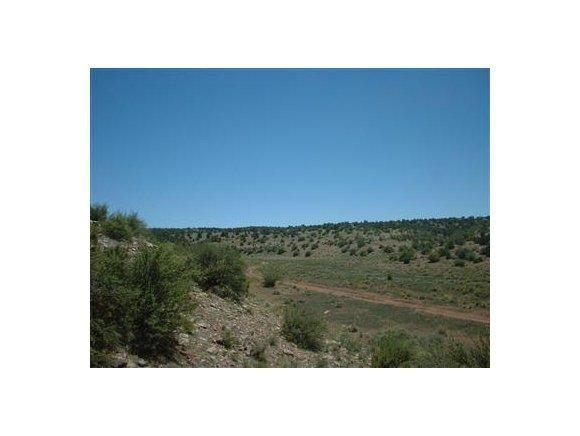 6808 S. Roadrunner Ln., Williams, AZ 86046 Photo 4
