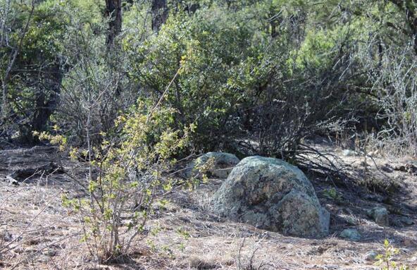 2695 W. Bentley Rd., Prescott, AZ 86303 Photo 3