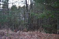 Home for sale: Lot 6 Maclor Forest Property, Franklin, NC 28734