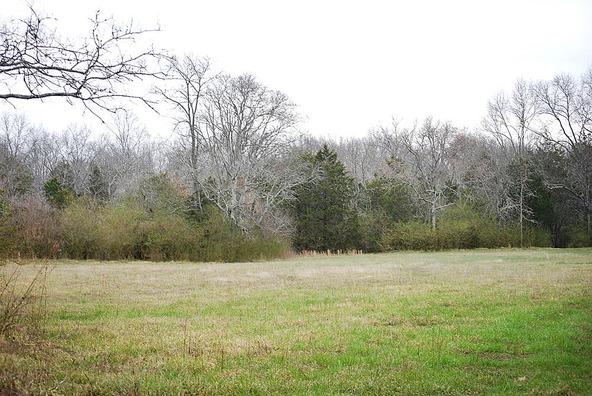 118 Hawksbeard Ct., Murfreesboro, TN 37128 Photo 11