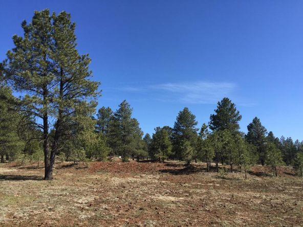 3602 E. Mountain Man Trail, Williams, AZ 86046 Photo 23