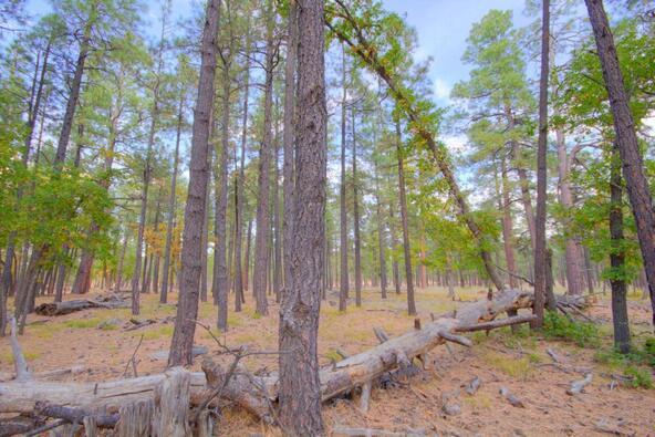 8100 W. Dk Ranch Rd., Flagstaff, AZ 86005 Photo 31