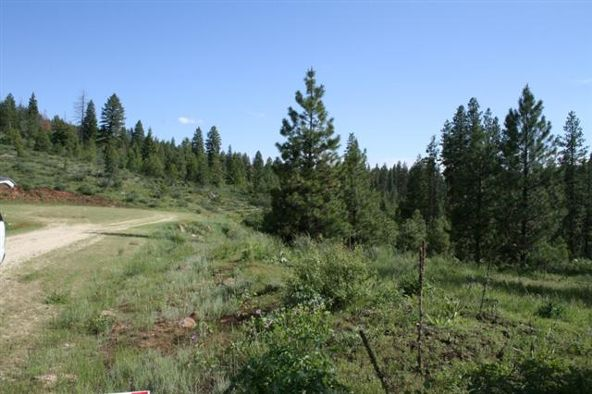 Lot 6 Forest Highlands, Boise, ID 83716 Photo 8