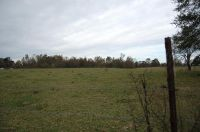 Home for sale: County Rd. 222, Bremen, AL 35033