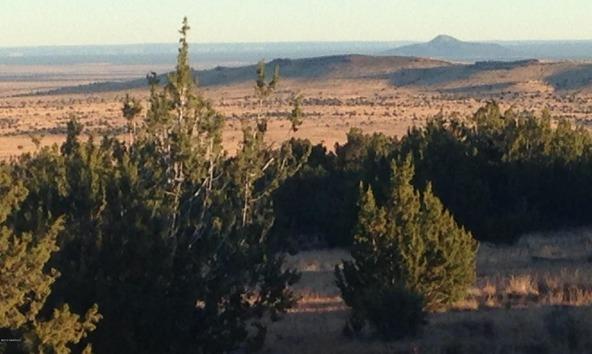 10922 S. High Mesa Trail, Williams, AZ 86046 Photo 30