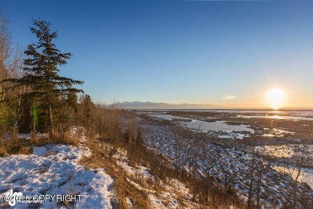 L28 B1a Chiniak Bay Dr., Anchorage, AK 99515 Photo 8