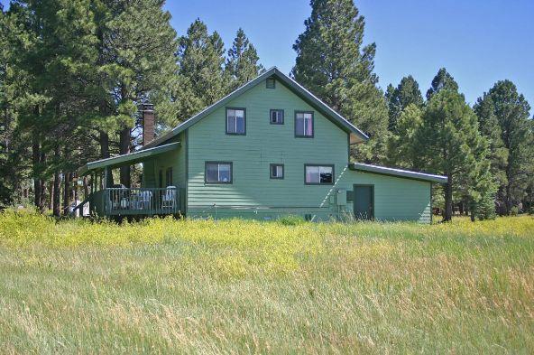 535 Lots A Luck Ln., Mormon Lake, AZ 86038 Photo 54