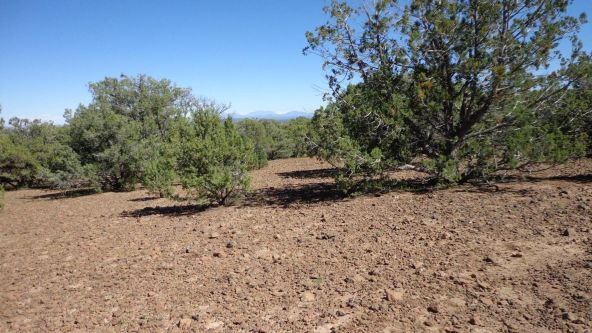 514 Westwood Ranch Lot 514, Seligman, AZ 86337 Photo 4