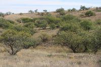 Home for sale: Purple Mountain Trail, Arivaca, AZ 85601