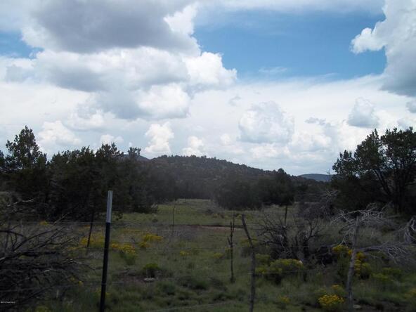 184 E. Bald Eagle Ln., Williams, AZ 86046 Photo 5