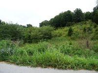 Home for sale: Lot 1 Roaring Fork Rd., Greeneville, TN 37745