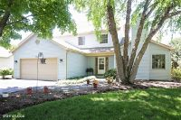 Home for sale: 432 Parkside Dr., Elburn, IL 60119