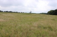 Home for sale: Tbd Hwy. 82 W. Hwy. E., Avery, TX 75554