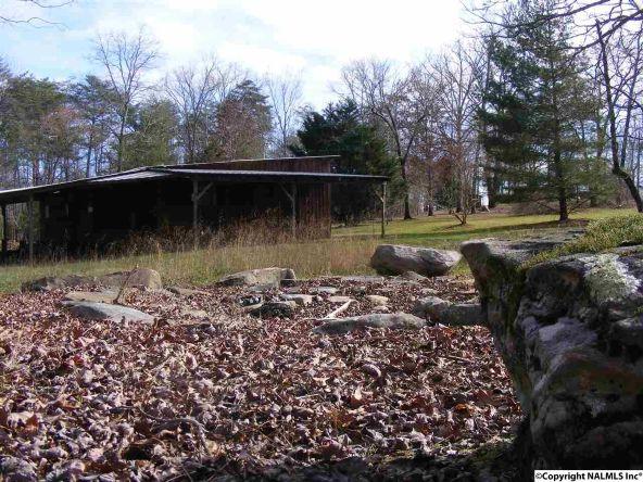 9416 County Rd. 103, Mentone, AL 35984 Photo 34