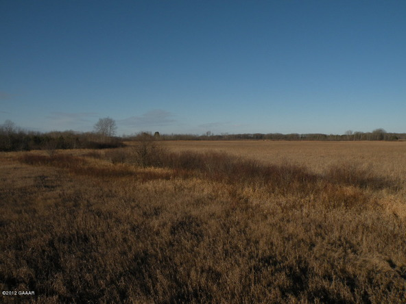 County Rd. 138, Parkers Prairie, MN 56361 Photo 17