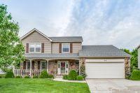 Home for sale: 96 Red Fox Run, Montgomery, IL 60538