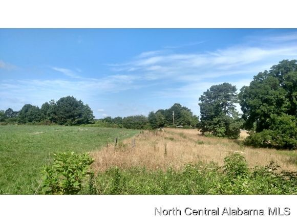 2108 Co Rd. 1693, Holly Pond, AL 35083 Photo 14