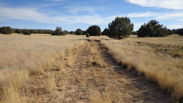 44201 N. Crazy Coyote Way, Seligman, AZ 86337 Photo 38