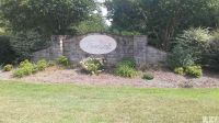 Home for sale: 00 Oak Point Ln., Stony Point, NC 28678