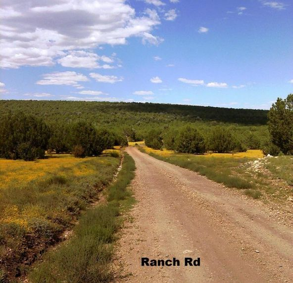 1104 Westwood Ranch Lot 1104, Seligman, AZ 86337 Photo 8