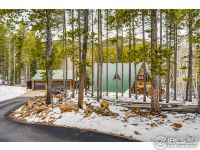 Home for sale: 60 Paiute Rd., Evergreen, CO 80439