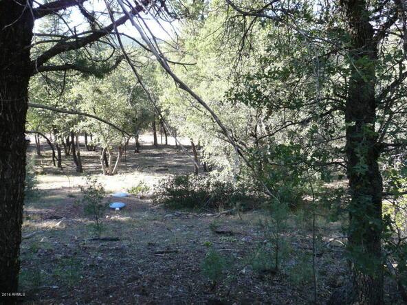 8b N. Chamberlain Trail, Young, AZ 85554 Photo 26