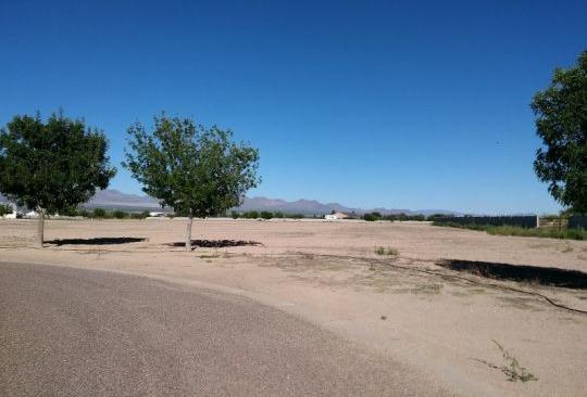 6500 W. Palo Verde Ln., Pima, AZ 85543 Photo 8