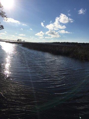 104 8th Avenue, Gulf Shores, AL 36542 Photo 2