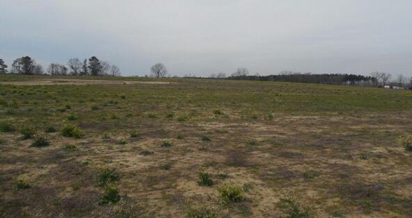 7 Acres Hardy Rd., Rehobeth, AL 36301 Photo 21
