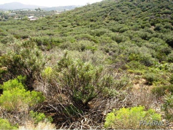 12991 E. Oak Hills Trail, Mayer, AZ 86333 Photo 17