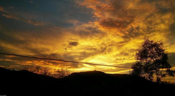 9821 N. El Uno Minor, Tucson, AZ 85743 Photo 22
