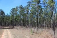 Home for sale: 130 Acres Todd Rd., Sumrall, MS 39482