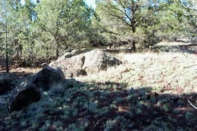 1419 W. Maverick Ln., Williams, AZ 86046 Photo 9
