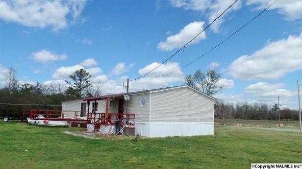 547 County Rd. 550, Grove Oak, AL 35975 Photo 21