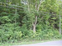 Home for sale: --- Nv Maine Rd., Newark Valley, NY 13811
