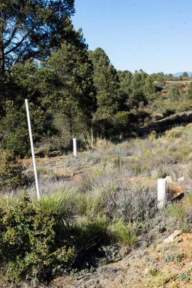 17955 W. Buckhorn Dr., Peeples Valley, AZ 86332 Photo 7