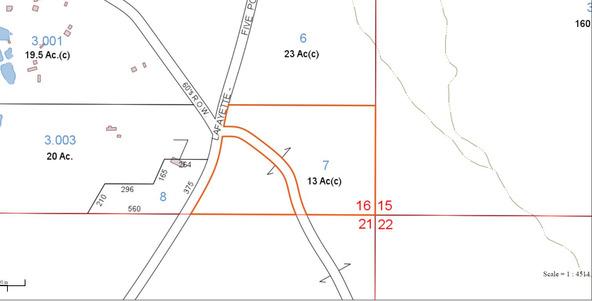 122 +/- Acres County Rd. 176, Five Points, AL 36855 Photo 16