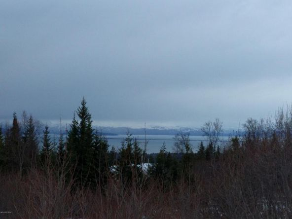 54341 del Urban Ct., Homer, AK 99603 Photo 3