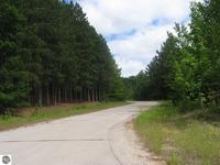 Home for sale: E. Pinehurst Trail, Cedar, MI 49621