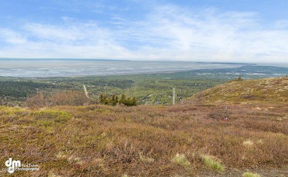 9820 Meadow Rd., Anchorage, AK 99516 Photo 10