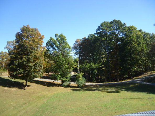 200 Co Rd. 336, Crane Hill, AL 35053 Photo 7