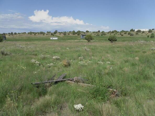 25580 N. Fish Lake Rd., Paulden, AZ 86334 Photo 23