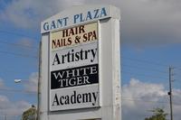 Home for sale: 13625 Linden Dr., Spring Hill, FL 34609