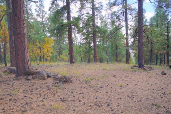 8100 W. Dk Ranch Rd., Flagstaff, AZ 86005 Photo 13