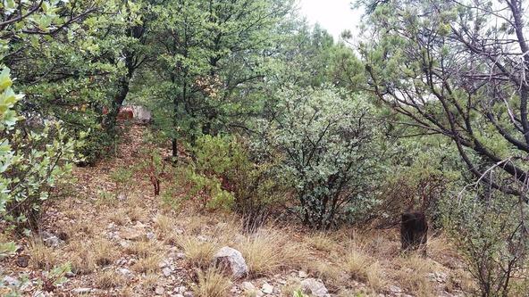 2300 W. Loma Vista Dr., Prescott, AZ 86305 Photo 10