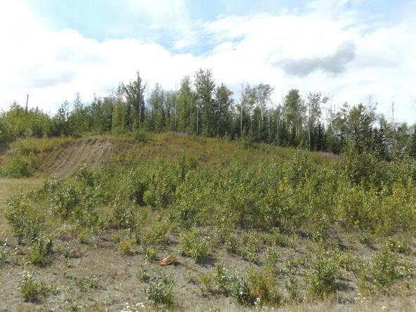 7912 E. Matanuska Spur Rd., Wasilla, AK 99645 Photo 32