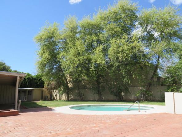 240 E. Bethany Home Rd., Phoenix, AZ 85012 Photo 6