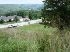 Lot 50 L 50 Whitetail Dr., Walnut Shade, MO 65771 Photo 19