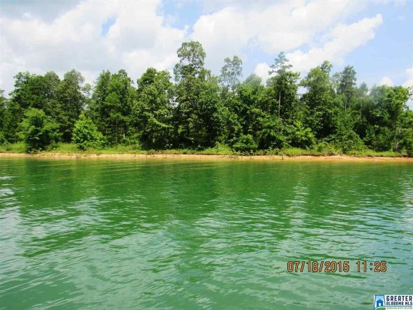 90 Stoney Point Landing, Double Springs, AL 35553 Photo 6